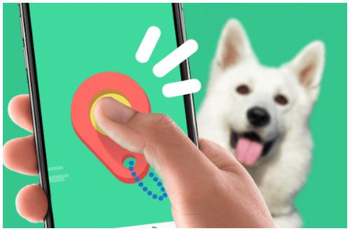 Go Dogo app